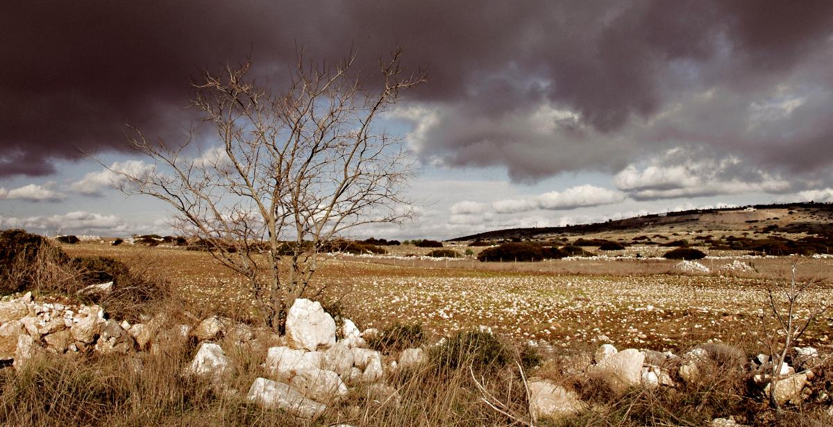Murgia_Timone_scorcio_Panoramico